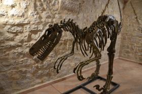 Museo dei Fossili e della Ambre (San valentino in Abruzzo Citeriore)